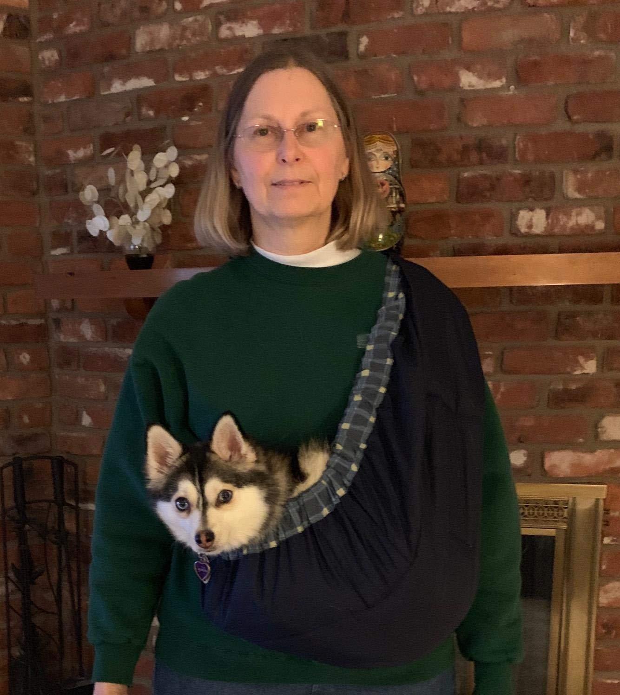 OrgMemory Pet Sling Carrier, Adjustable Sling Bag, Small Dog Cat Outdoor Shoulder Carrier Bag (Blue Plaid) by OrgMemory