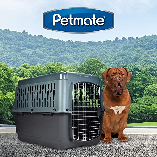 Aspen-Pet-Porter-Heavy-Duty-Pet-Kennel