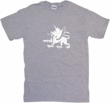 My Godmother in Colorado Loves Me Toddler//Kids Raglan T-Shirt