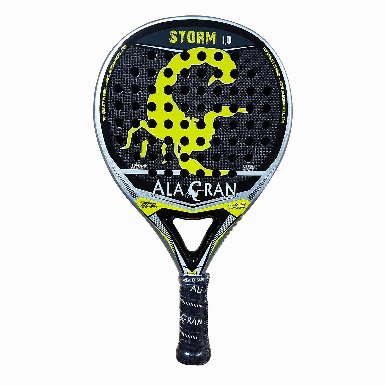 Pala de Padel Profesional Alacran Storm 1.0: Amazon.es: Deportes y aire libre