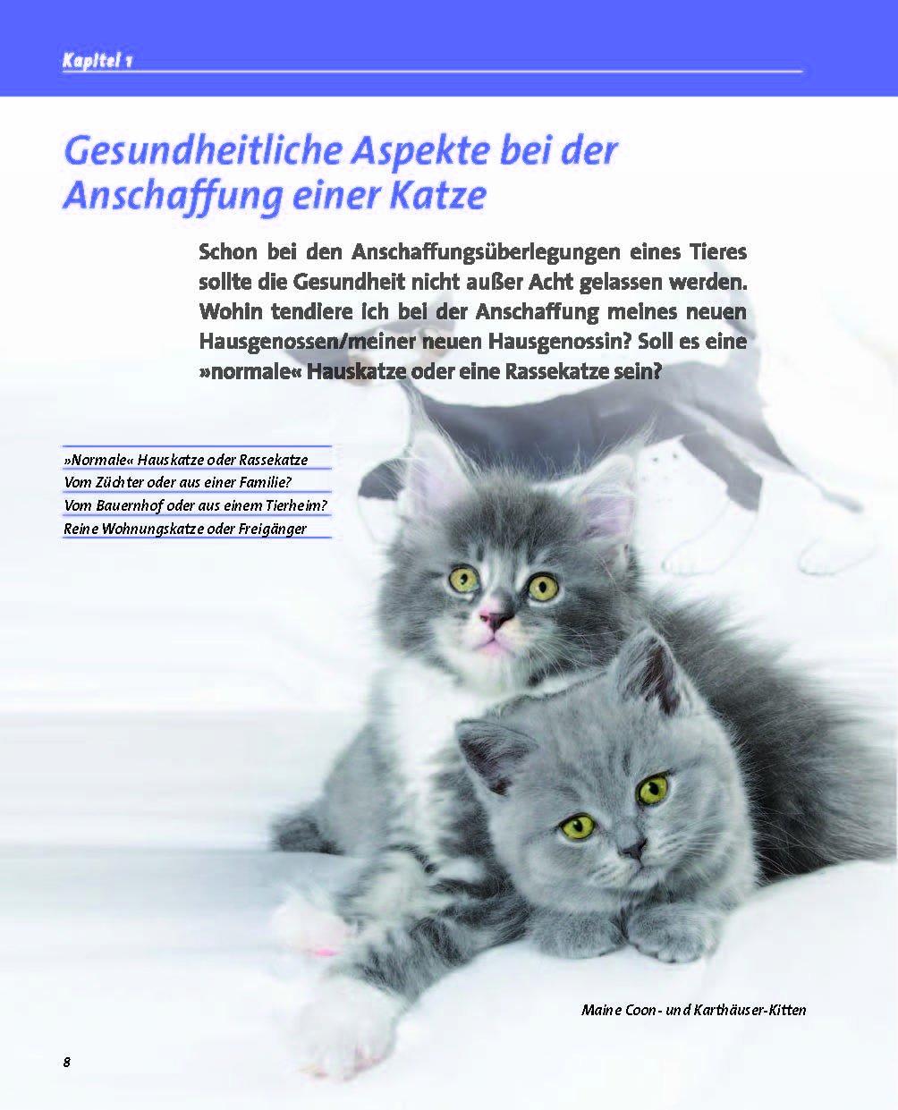 Gesunde Katze (Happy Cats): Amazon.de: Annette Thomée: Bücher