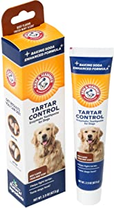 Arm & Hammer Dog Dental Care Tartar Control Enzymatic Toothpaste for Dogs | Reduces Plaque & Tartar Buildup | Safe for Puppies, 2.5 oz, Beef Flavor