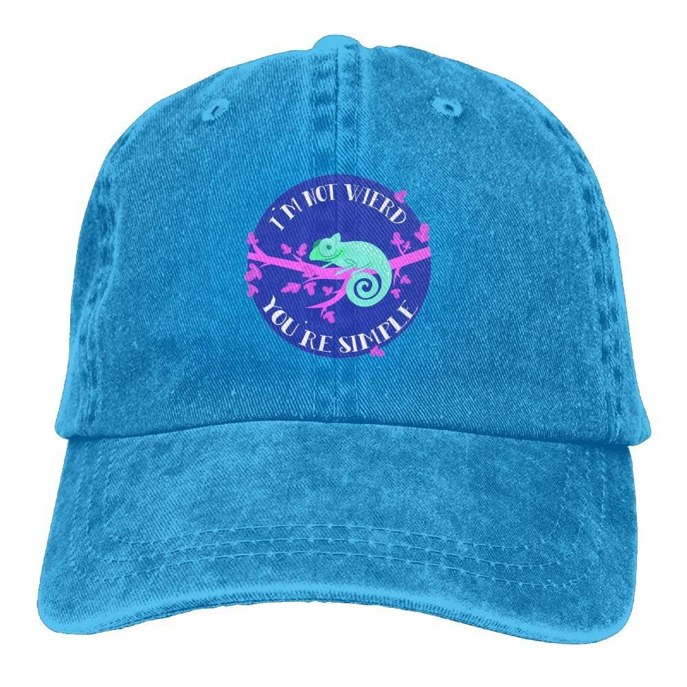 Chameleon Fashion Cowboy Baseball Caps Trucker Hats: Amazon.es ...