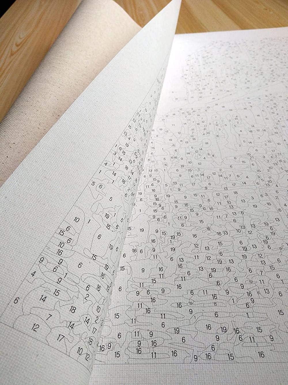 40 x 50 cm, senza bordo Usa il numero del kit con pennello e vernice acrilica per dipingere