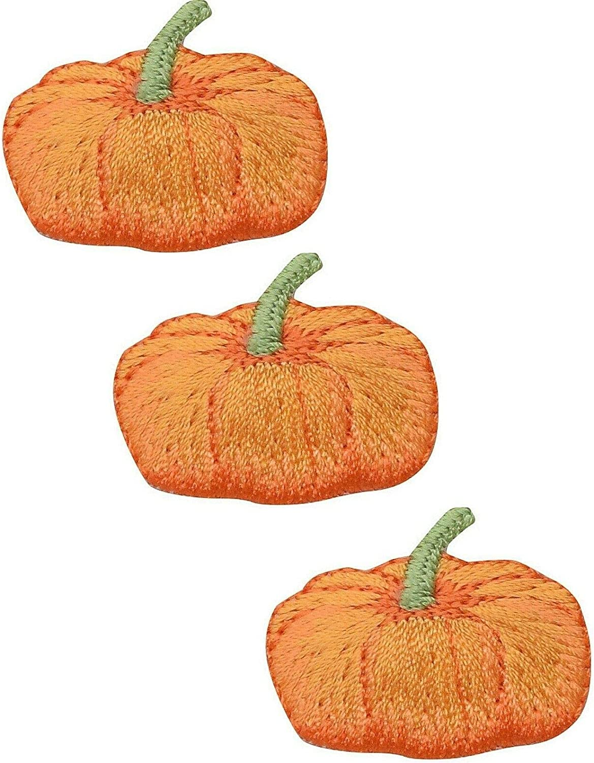 Iron on Pumpkin with Acorns Applique Patch