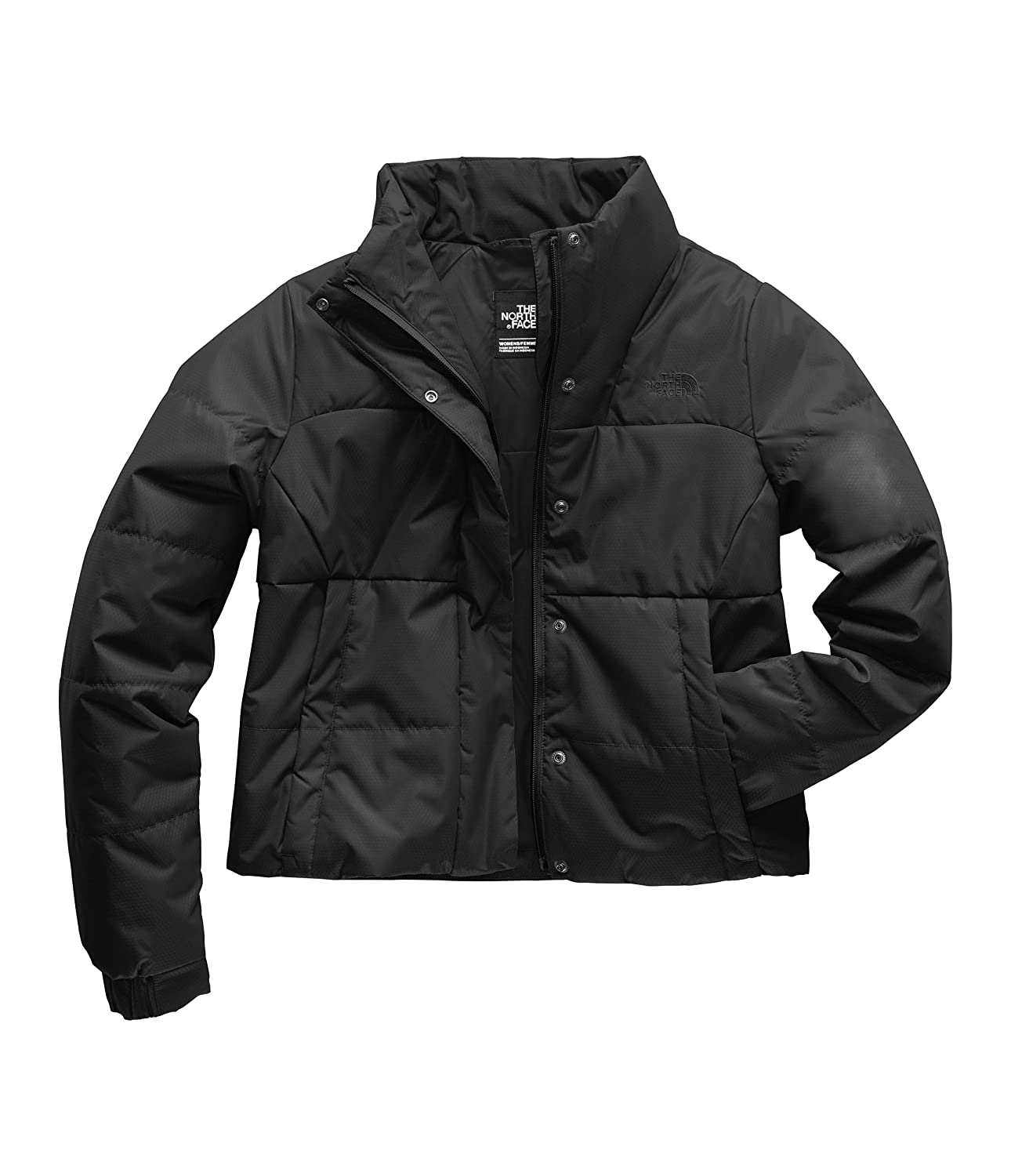 1643b237c The North Face Women's Femtastic Insulated Jacket