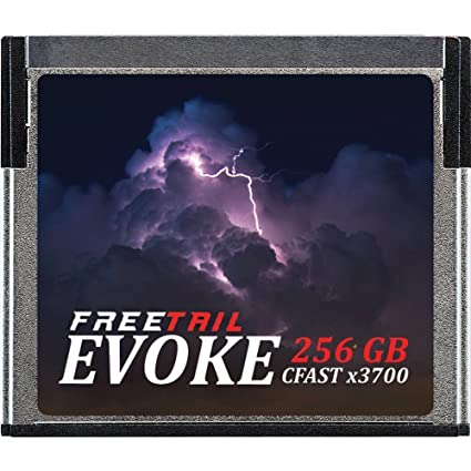 FreeTail Evoke 3700x 256GB CFast 2 0 Memory Card, Up to 560MB/s, VPG-130  (FTCF256A37)