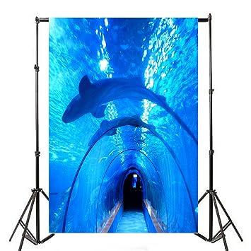 aaloolaa fotografía antecedentes océano acuario marino Museo Mar Peces Azul Cristal túnel Boy bebé niños amante ...