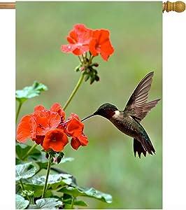 ShineSnow Hummingbirds Birds Spring Summer Red Flowers Blossom Seasonal House Flag 28