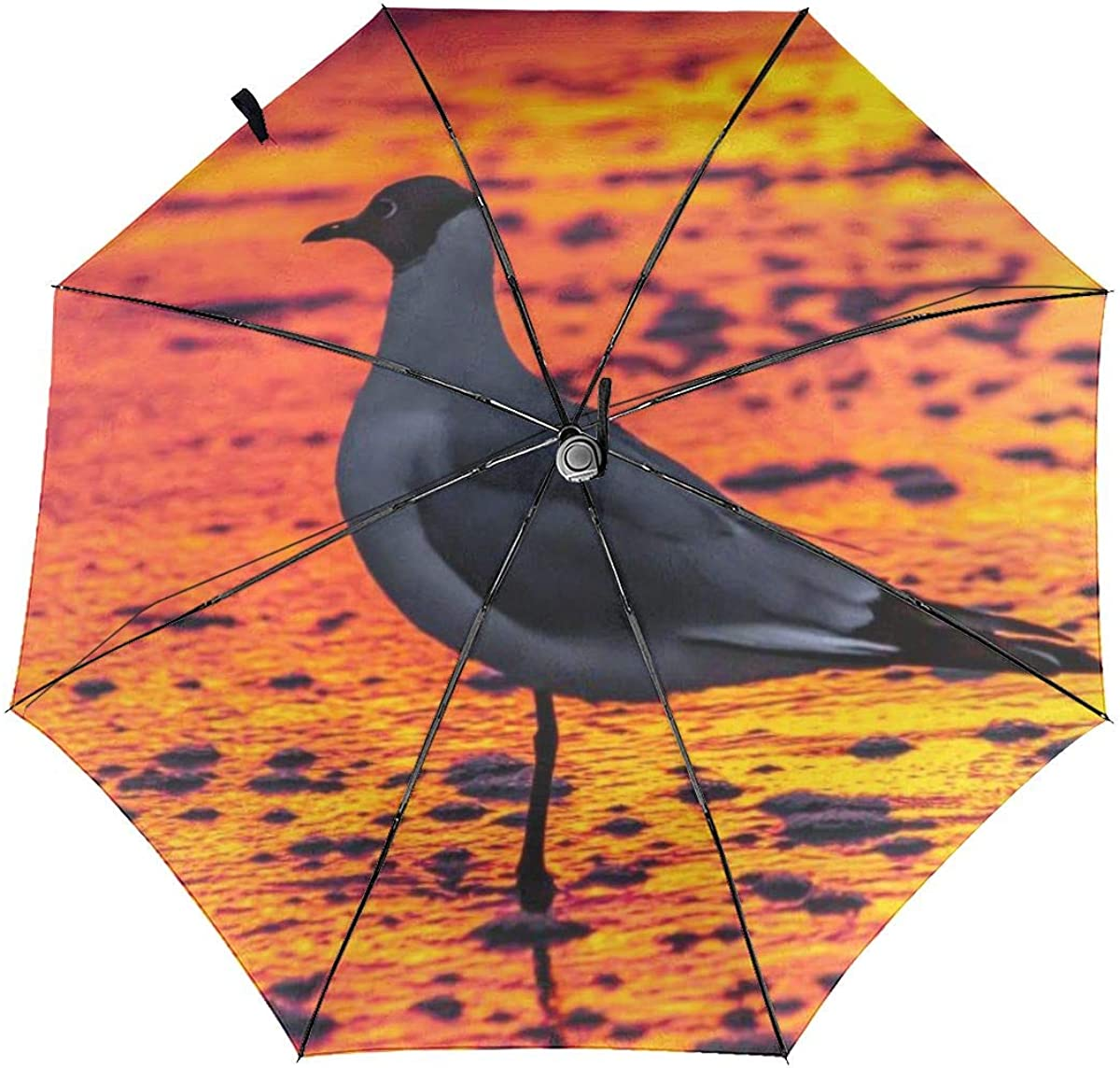 Seagull Afterglow Sunset Shadow Red Compact Travel Umbrella Windproof Reinforced Canopy 8 Ribs Umbrella Auto Open And Close Button Customized