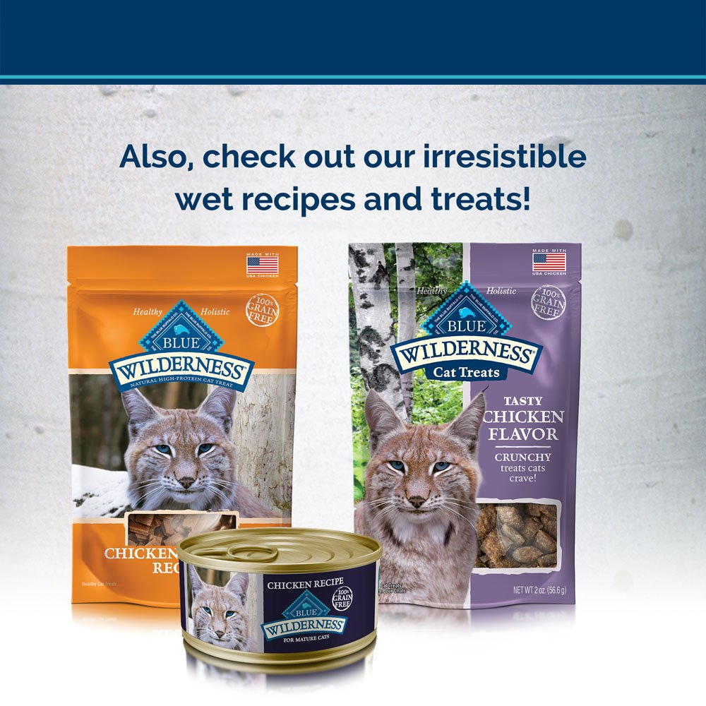 Blue Buffalo Wilderness High Protein Grain Free, Natural Mature Dry Cat Food, Chicken 5-lb