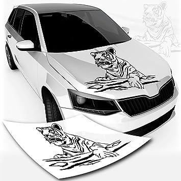 Klebe X Autotattoos Autoaufkleber Löwe Afrika Tiger Farbe Folie Größe Auto