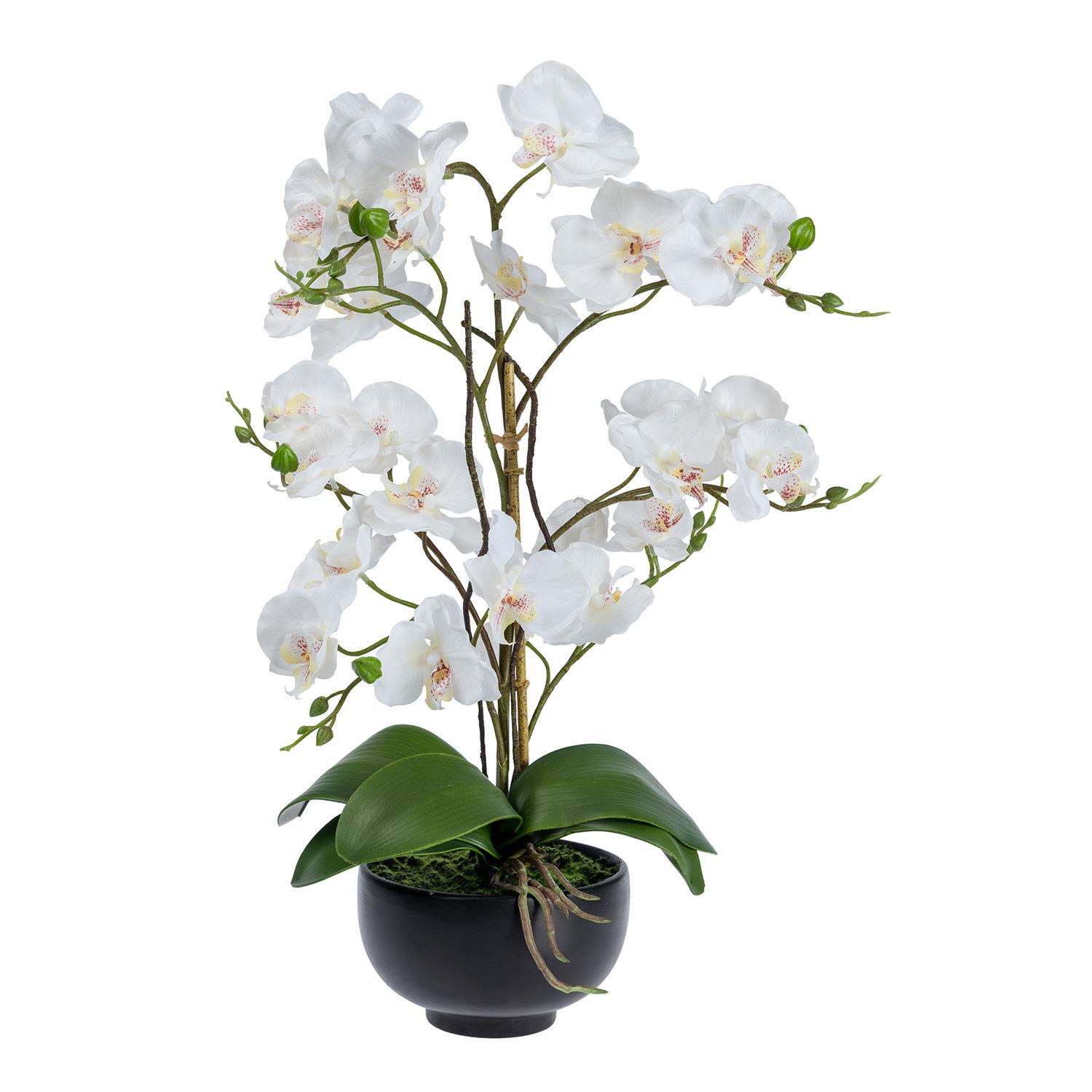 Homescapes Large White Artificial Orchid with Lifelike Silk Flowers and Realistic Green Leaves Oriental Phalaenopsis Orchid Flower in Round Mat Black Planter Pot 60cm Tall for Indoor Decoration