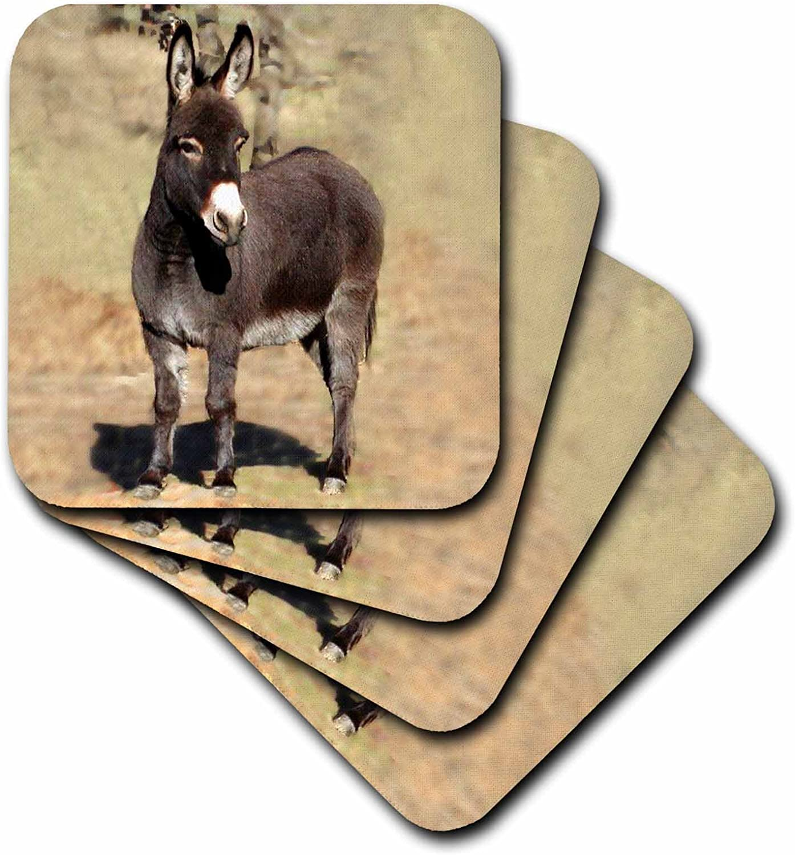 Amazon Com 3drose Miniature Donkey Ceramic Tile Coaster Set Of 4 Home Kitchen