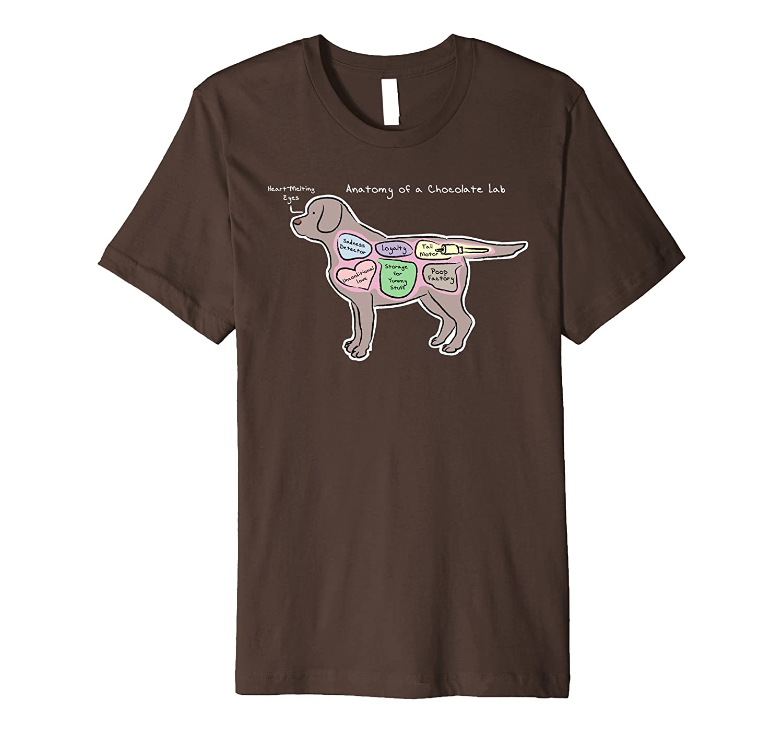 Anatomy of a Chocolate Lab – Dark Shirts