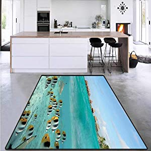 Ocean, Area Rugs for Bedroom, Blacktip Reef Shark Chasing Butterfly Fish Lagoon of Bora Bora Tahiti, for Living Room 6' x 7' Aqua Yellow and Black