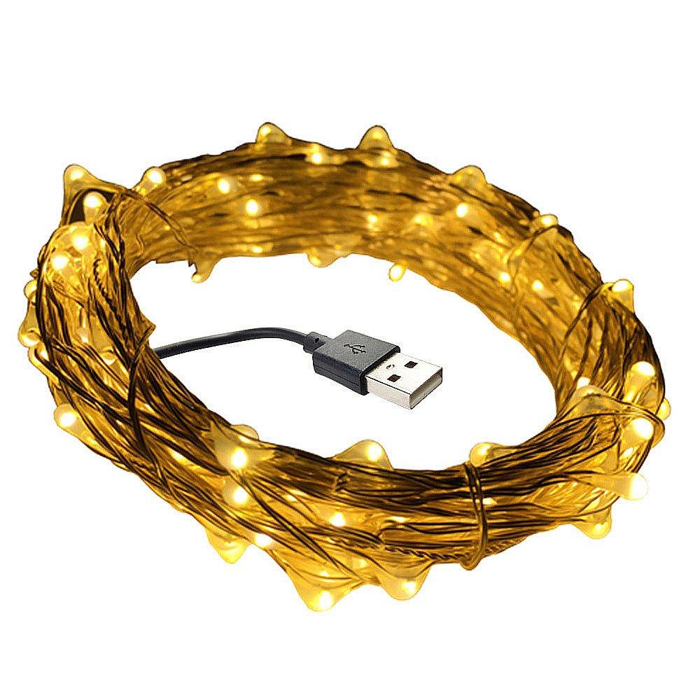 DZYDZR 10 m / 33 ft USB LED Lichterkette Kupferdraht 100 LEDs Wasserdicht Sternenlicht für Innen- und Außenbereich, Geburtstag, Hochzeit, Weihnachtsfeier (Warmes weiß)