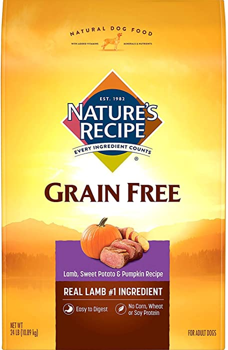 Top 10 Grain Free Halo Dog Food