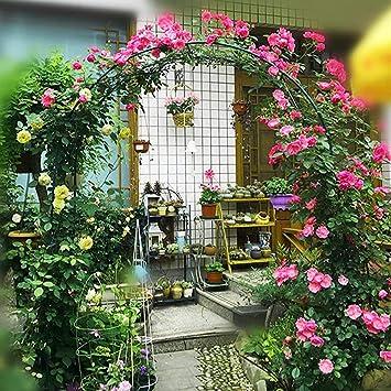 Panelk Red de Acero Arcos jardín decoración de jardín de Metal con Recubrimiento de Polvo para Plantas trepadoras,Green-2: Amazon.es: Hogar
