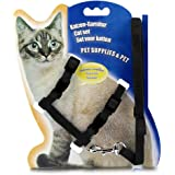 THE DDS STORE Cat and Small Pet Nylon Strap Collar with Adjustable Walking Harness Leash (Black)