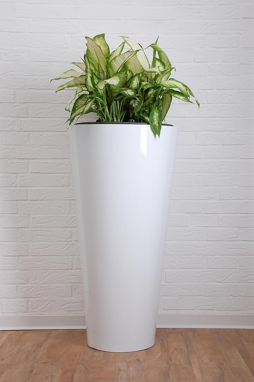 Pflanzkübel aus Fiberglas Rondo Classico, 100 cm, Weiß Hochglanz ...
