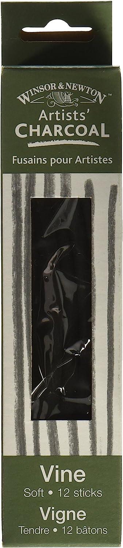 Extra-Soft Winsor /& Newton Artist Vine Charcoal Sticks 12//Pkg