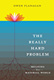 The Really Hard Problem: Meaning in a Material World (MIT Press)