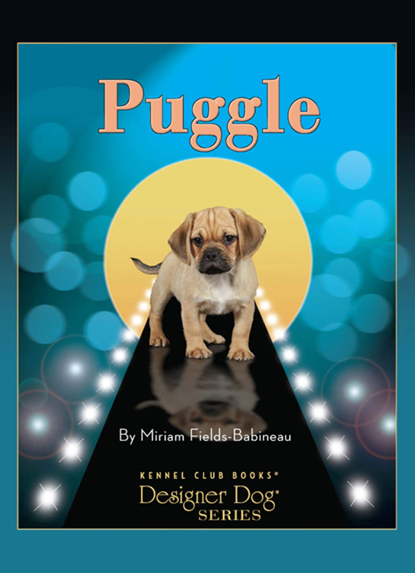Puggle-Designer-Dog