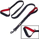 tobeDRI Heavy Duty Dog Leash - 2 Padded Handles, 6 feet long - Dog Training Walking Leashes for Medium Large Dogs