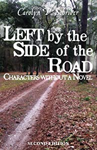 Left by the Side of the Road (The Civil War in South Carolina's Low Country Book 4)