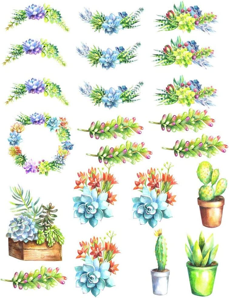 Choose Ceramic or Glass Decal 86087 Watercolor Succulents 2 Cactus Choose from 3 Different Sizes