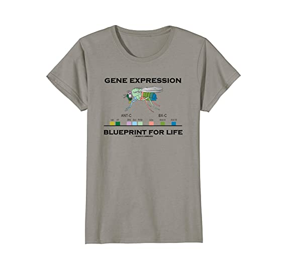 Amazon gene expression blueprint for life genes drosophila amazon gene expression blueprint for life genes drosophila humor clothing malvernweather Gallery