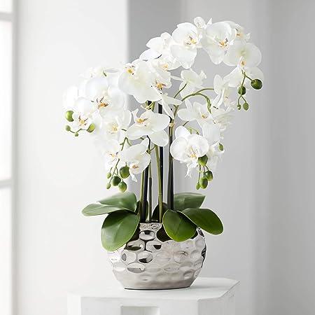 Amazon Com Dahlia Studios White Phalaenopsis 23 H Faux Orchid In Silver Ceramic Pot Home Kitchen