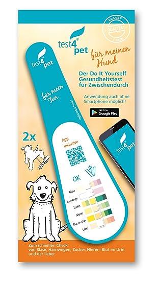 test4pet, Gesundheitstest Hund, 2x1er Schnelltest für Blase ...