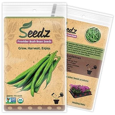 Organic Green Bean Seeds, APPR. 125, Green Bean, Heirloom Vegetable Seeds, Certified Organic, Non GMO, Non Hybrid, USA : Garden & Outdoor