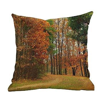 Amazon.com: Matt Flowe - Funda de almohada, diseño de hadas ...