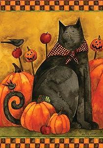 Toland Home Garden Folk Cat 28 x 40 Inch Decorative Halloween Kitty Pumpkin House Flag