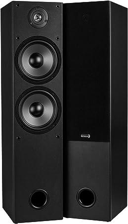 Dayton Audio T652 Best Floor Standing Speakers Under 300