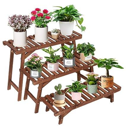 Amazon.com: Soporte de madera de pino para plantas de ...