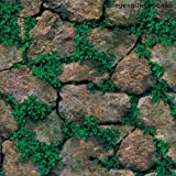 Univocean 3D Modern Stone Green Plant Wallpaper, Wall Poster, Wall Sticker, PVC Self Adhesive for Bedrooms, Living Room, Hall, Play Room, Garden Home Decoration Stickers (200 x 45 cm)