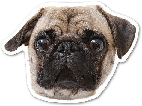 """BLACK PUG Agenda for the Day Funny Fridge Dog Magnet 4.5/"""" x 3.5/"""""""