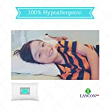 Toddler Pillow with Pillowcase by LANCON Kids
