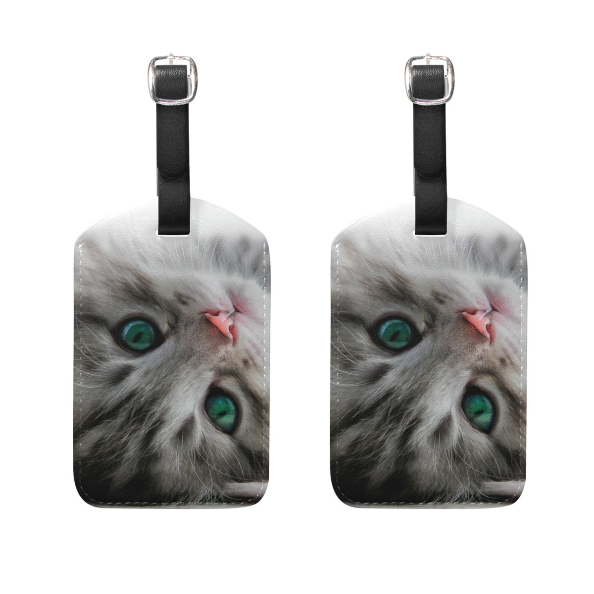 COOSUN Kitten Lays Isolated Luggage Tags Travel Labels Tag Name Card Holder for Baggage Suitcase Bag Backpacks, 2 PCS