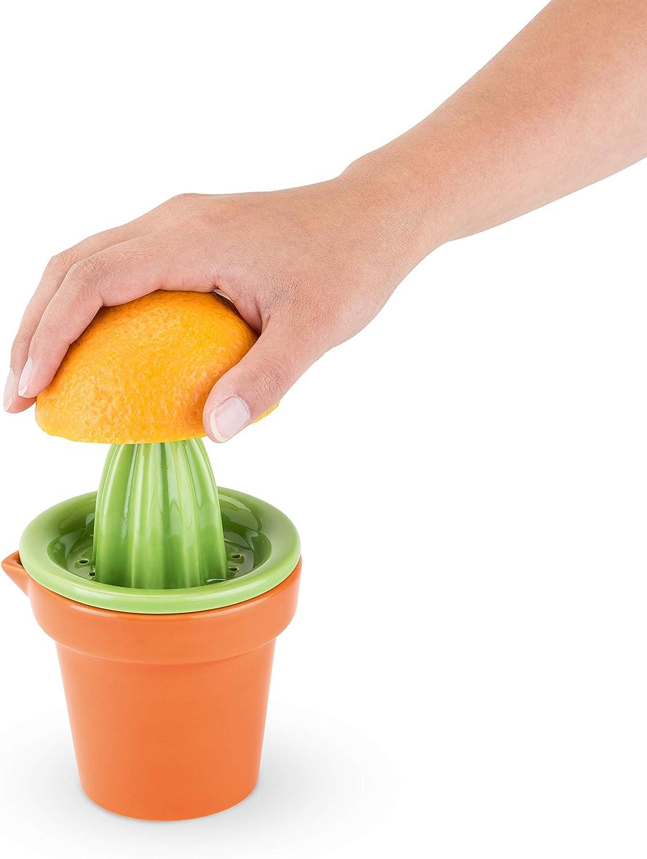 TrueZoo 5154 Prickly Cactus Citrus Juicer, Multicolor