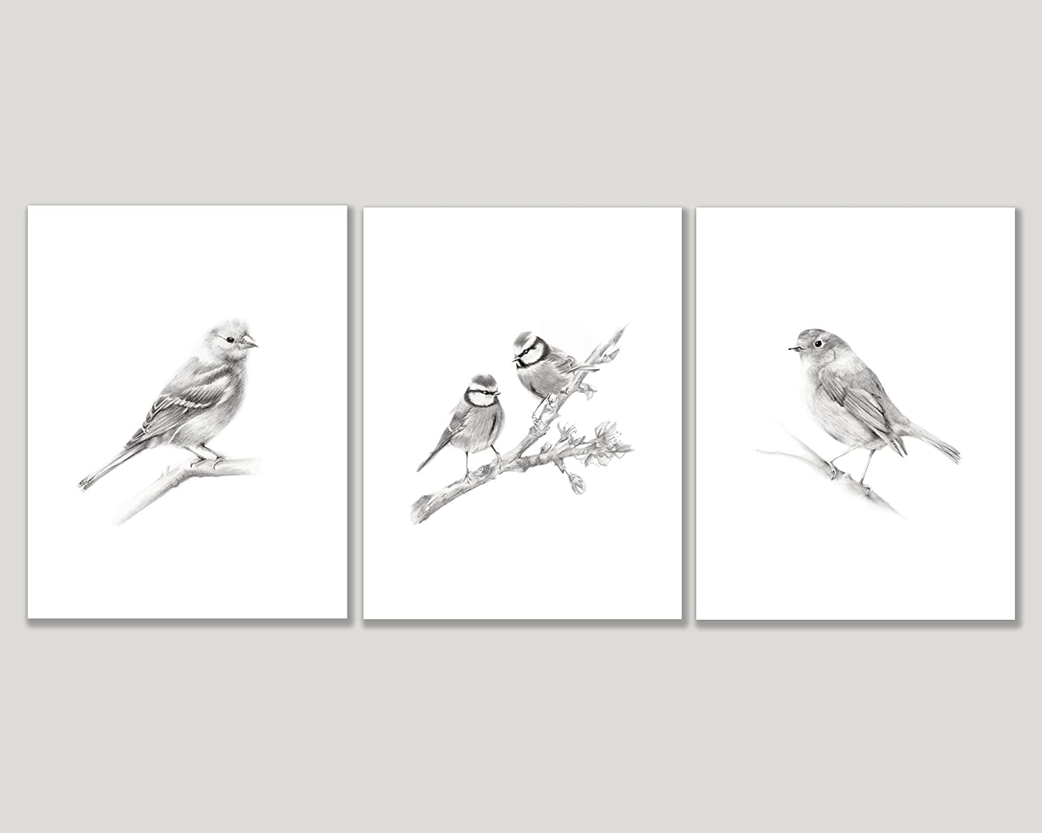 Amazon com bird pencil art prints set of 3 available in various sizes unframed prints handmade