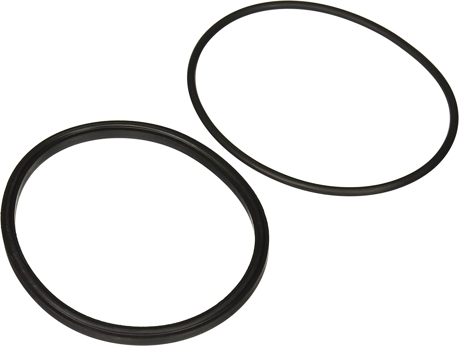 Zodiac R0449100 Lid Seal with O-Ring Replacement Kit for Select Zodiac Jandy Pool and Spa Pumps