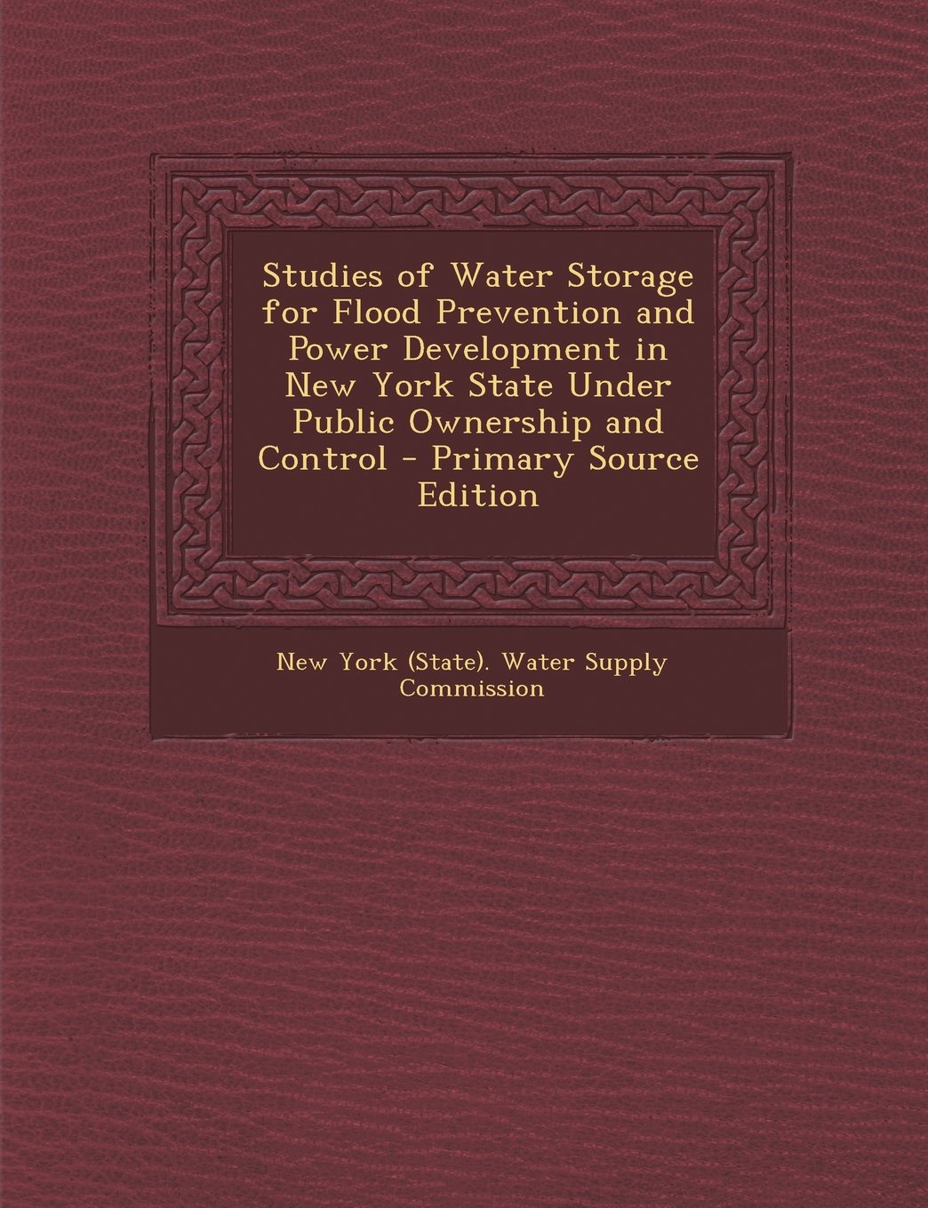 Read Online Studies of Water Storage for Flood Prevention and Power Development in New York State Under Public Ownership and Control PDF