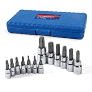 WORKPRO 13-piece Torx Bit Socket Set T8-T60, S2 Steel