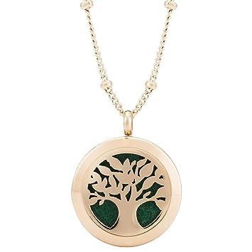 Amazon rose gold aromatherapy pendant for essential oils rose gold aromatherapy pendant for essential oils aloadofball Gallery