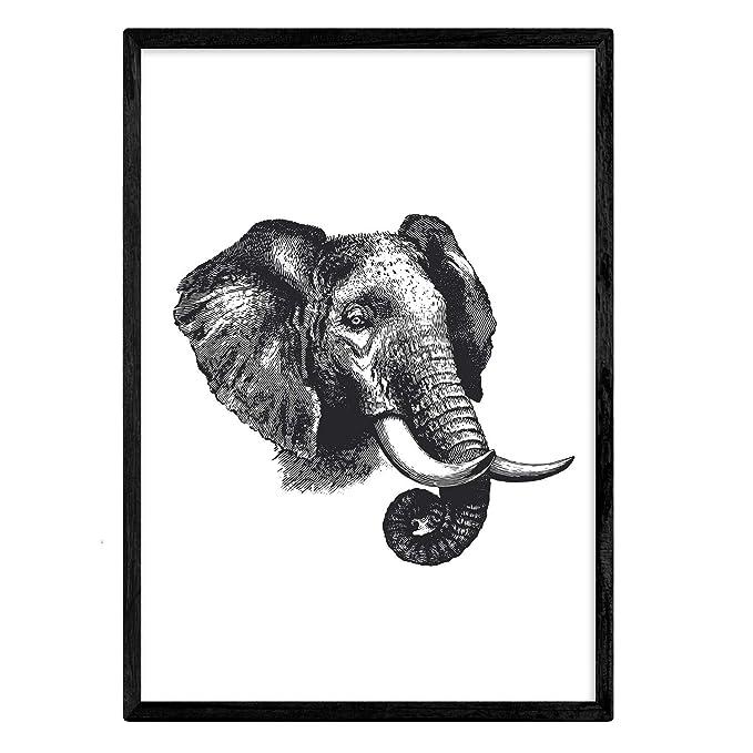 Nacnic Lámina De Elefante Perfil. Posters Con Anim...